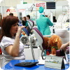 sibirskij-stomatologicheskij-forum-2011